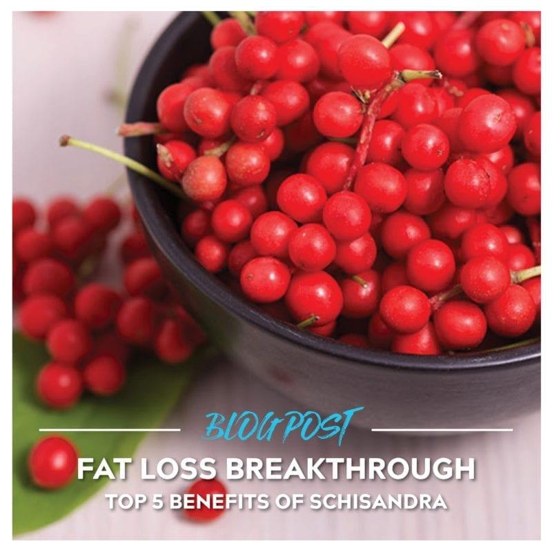 Benefits of Schisandra